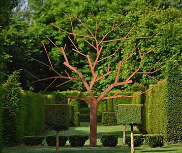 jardins-albizia-3.jpg