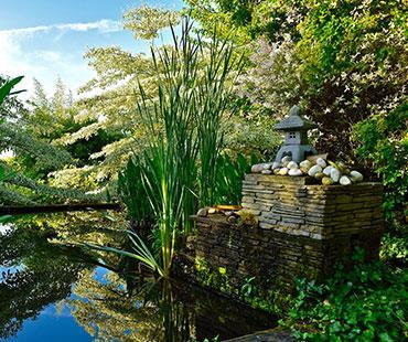 jardins-albizia-1.jpg